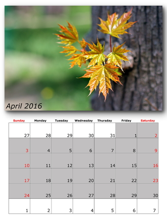 for print: april nature calendar page layout for print