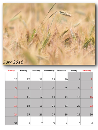 for print: july nature calendar page layout for print Stock Photo
