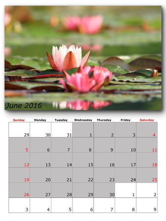 for print: june nature calendar page layout for print