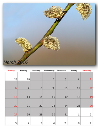 for print: march nature calendar page layout for print Stock Photo