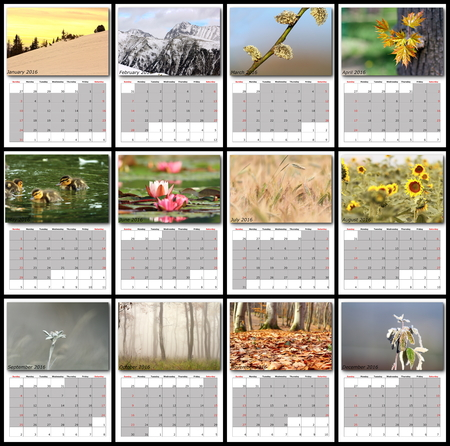 calendrier: nature images calendar year 2016 all months layout for print