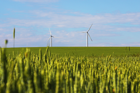 landscape with windmills for green electric power, image taken in agricultural area  Stock Photo