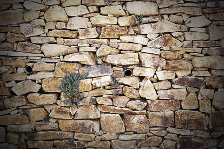 stone wall with vegetation, texture for your design