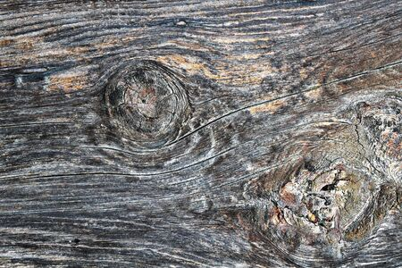 knotty surface of old spruce wooden plank 스톡 콘텐츠