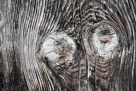 old wooden plank texture with knots, natural backdrop for your design 스톡 콘텐츠