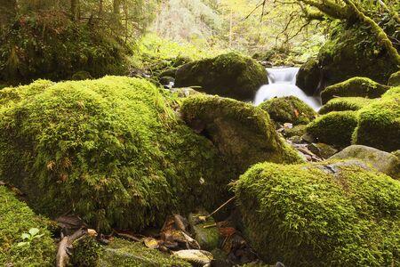 big rocks on moutain stream, Rachitele, Apuseni Natural Park