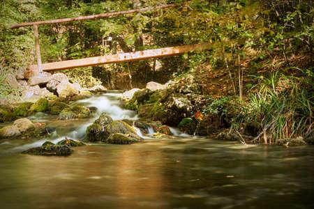 bridge over small cascade in CHeile Nerei Beusnita National Park