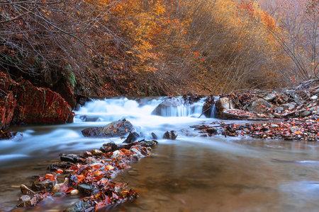 autumn waterfall detail in Apuseni mountains at Scarita Belioara,
