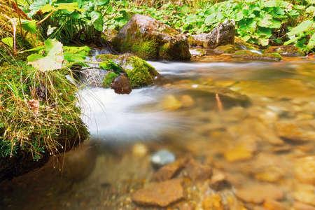 detail of mountain stream in Apuseni mountains, Romania Standard-Bild