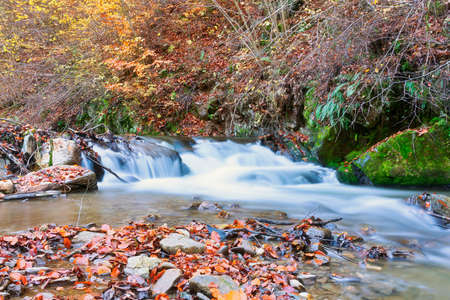 waterfall on mountain stream in Apuseni mountains, Romania