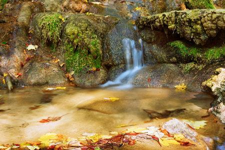 detail of mountain stream in Cheile Nerei Beusnita National Park, Romania Standard-Bild