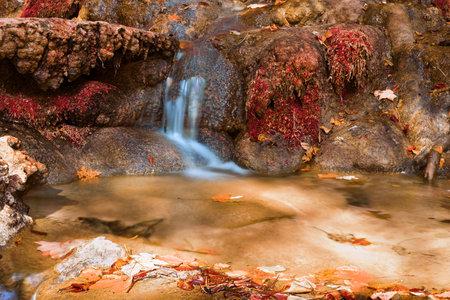 small cascade on mountain stream, Apuseni Natural Park