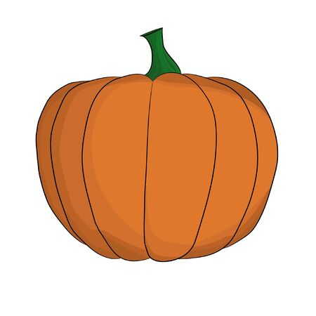 Isolated coupled orange pumpkin vector.