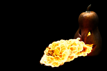 spewing: scary Halloween pumpkin is spewing fire flame isolated on black background