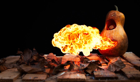spewing: Halloween pumpkin spewing flames of fire on a black background