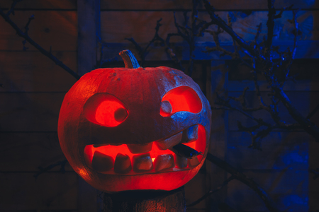 Concept of Halloween. glowing orange and blue light with angry terrible pumpkin, leaves, jack-lamp with candle of a happy Halloween, on a wooden background