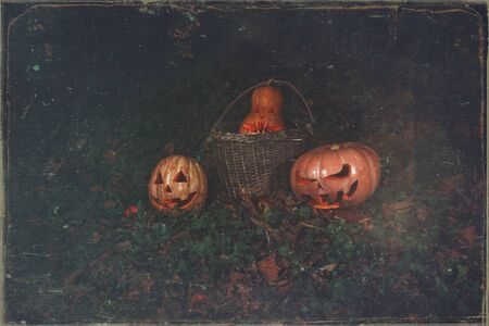 The concept of Halloween. Evil scary pumpkin in a basket in the forest. mystical jack lantern in the dark