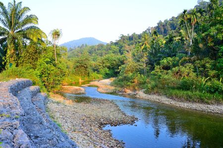 The stream flows from the mountains  has forest mountain background