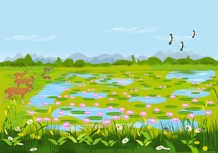 View of the lotus pond with deer and flowers. There are forests and mountains as background.