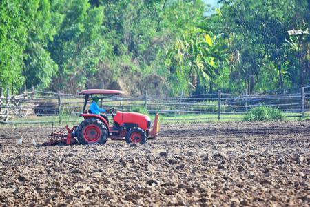 Landwirt im Traktor, der Land mit rotem Traktor für die Landwirtschaft pflügt Standard-Bild