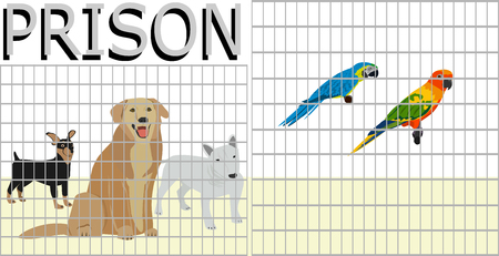 Pets that are locked in a cage by people. Similar to a prison on white background