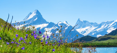 Swiss beauty, Schreckhorn and Wetterhorn, Switzerland.