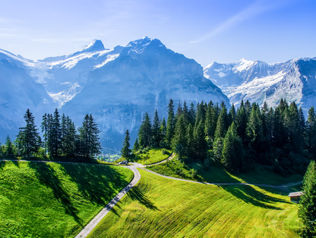 スイスの美しさ、ユングフラウ下の牧草地