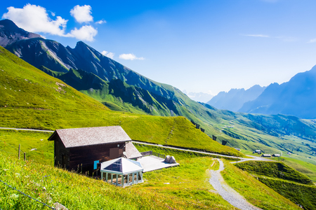 gloria: Swiss beauty, meadows under Jungfrau