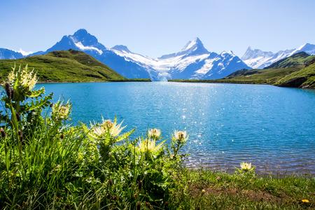 Swiss beauty, Schreckhorn and Wetterhorn, Switzerland.