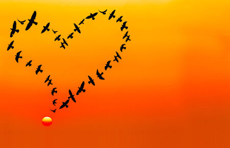 Heart shape made by flying birds in the sunset sky, in vintage tone. photo