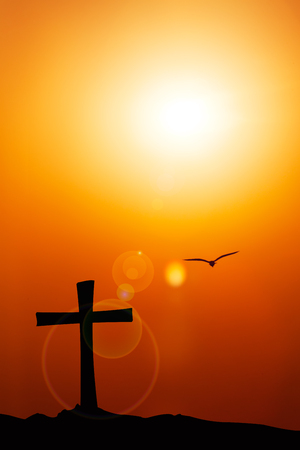 Silhouette of the cross and bird with the sunset flare.
