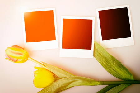 sun flare: Photo frames on paper background with sun flare and tulips. Stock Photo
