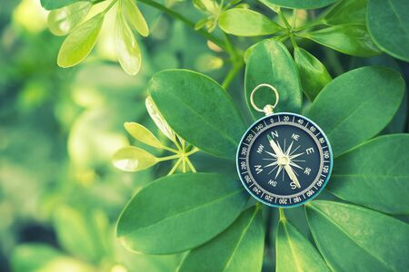 Travel background concept. Closeup of compass on green leaf. 写真素材
