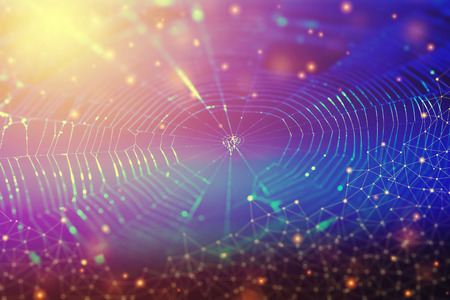 Network connection and technology background concept. Photo of spider web with lines and dots symbol. Stock fotó