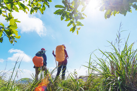 Travel background. Two backpacker standing on top of mountain looking forward to blue sky in sunny day. Freedom lifestyle. Fresh nature. Picture for add text message. Backdrop for design art work.