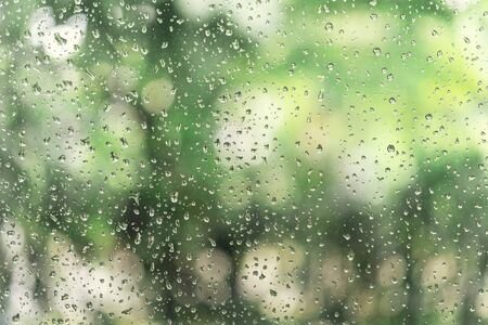 Abstract background from raindrop on glasses window with blurred green tree background. Fresh nature concept.