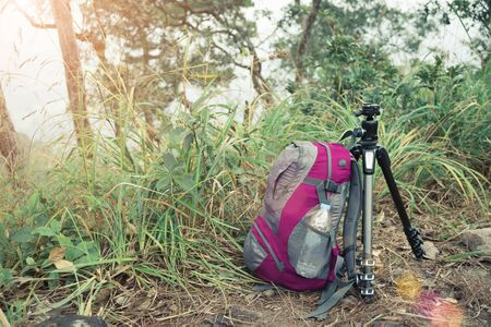 Travel and adventure concept. Traveller bag with tripod on forrest with sunlight. Picture for add text message. Backdrop for design art work. Banco de Imagens