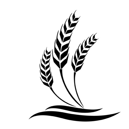 rice plant: Wheat vector