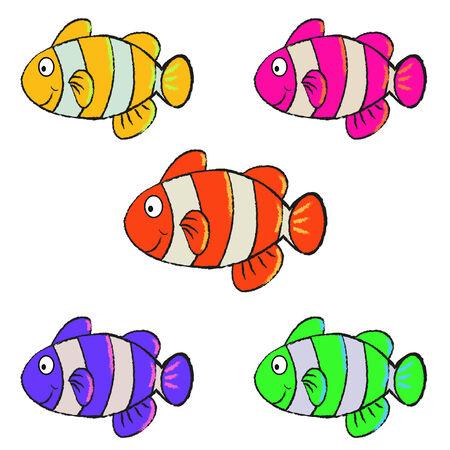 anemonefish: Clownfish