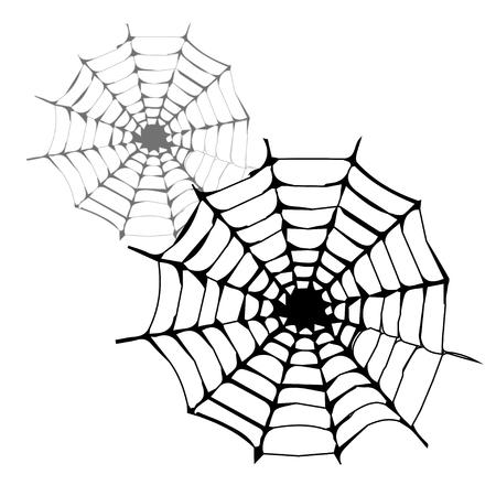 spinnennetz: Spinnennetz Vektor