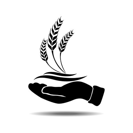 hands holding tree: hands with wheat Illustration
