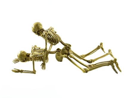 having sex: human skeleton model lovers having sex on white background Stock Photo