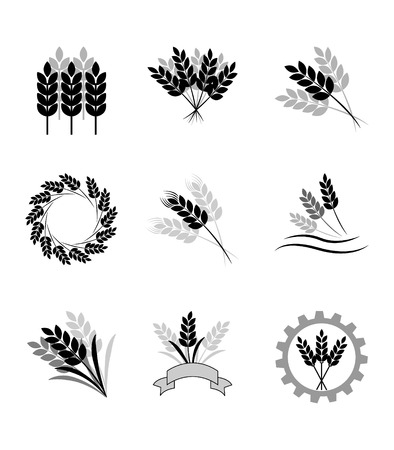 grain fields: Black cereal icons on white background, wheat icon