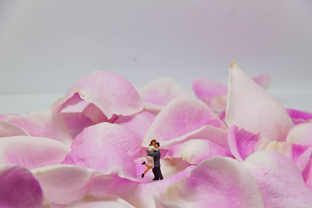 miniature couple embracing each other on pink rose petals.
