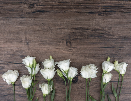 Eustoma white flowers with wood backgrounds, represents the freshness of spring.