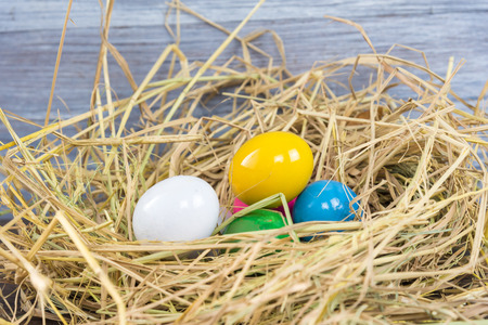 Colorful eggs. Rabbit Finds Eggs for Easter in a nest like birds nest.