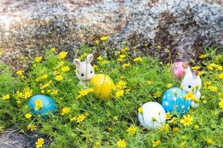 Rabbit Finds Eggs for Easter at Yellow Flower Garden Stockfoto