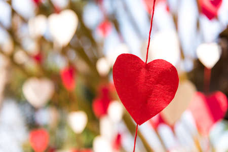 Red and white heart-shaped paper was tied by a string to hang on the tree for Valentine's Day love festival. Stockfoto