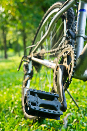 pedal of bicycle : the concept of cycling and beginning