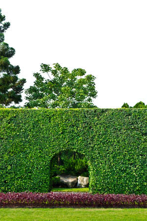 park entrance: plant & tree wall with entrance door